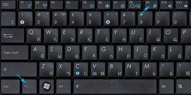 Отключение тачпада в ноутбуке Asus